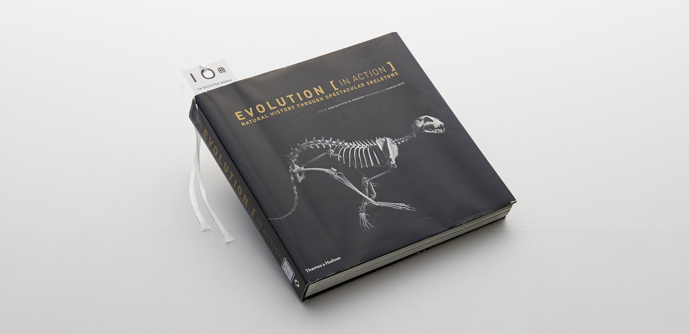 Vol.12 丸尾 一郎 Thames and Hudsonの本