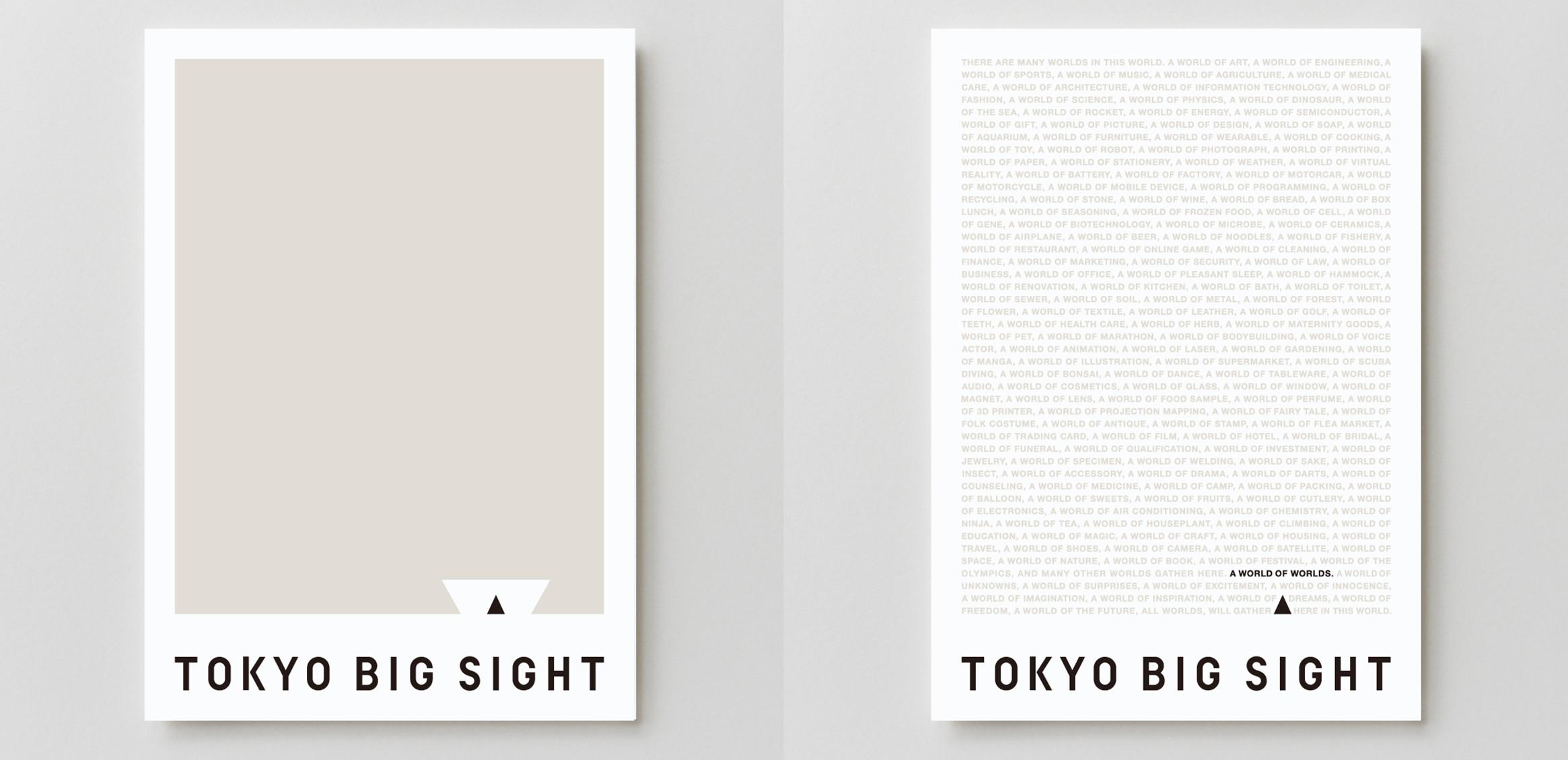TOKYO BIG SIGHT3枚目