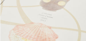 Collection Haute Cuisine Hiver 20156枚目サムネイル