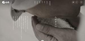 超特选白鹤天空袋滤纯米大吟酿山田锦/白鹤锦3枚目サムネイル