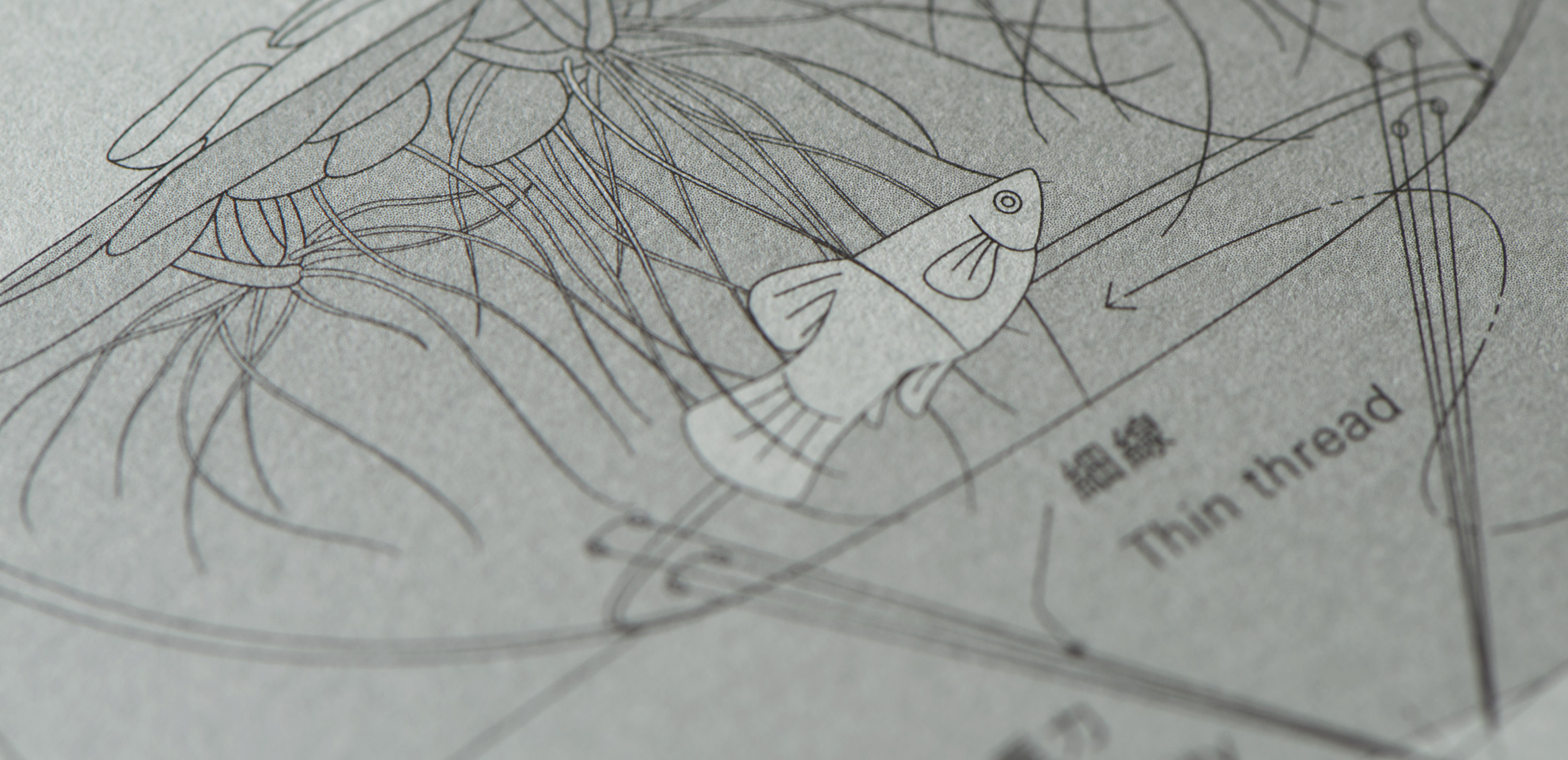 waterscape 作品集6枚目