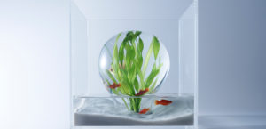 waterscape6枚目サムネイル