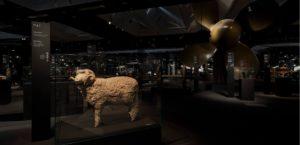 第21回 ミラノ・トリエンナーレ「新・先史時代 100の動詞」展3枚目サムネイル