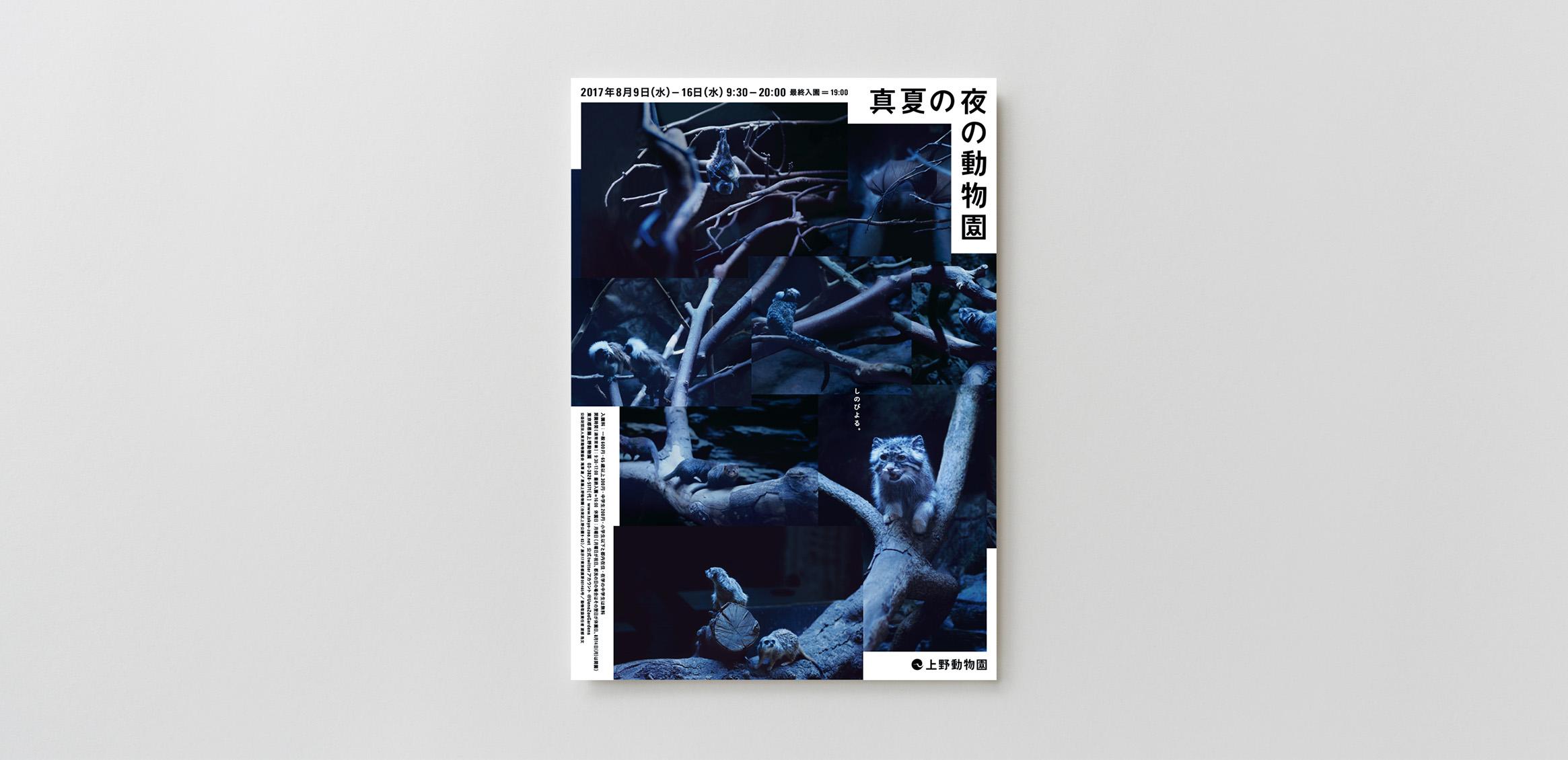 真夏の夜の動物園 20172枚目
