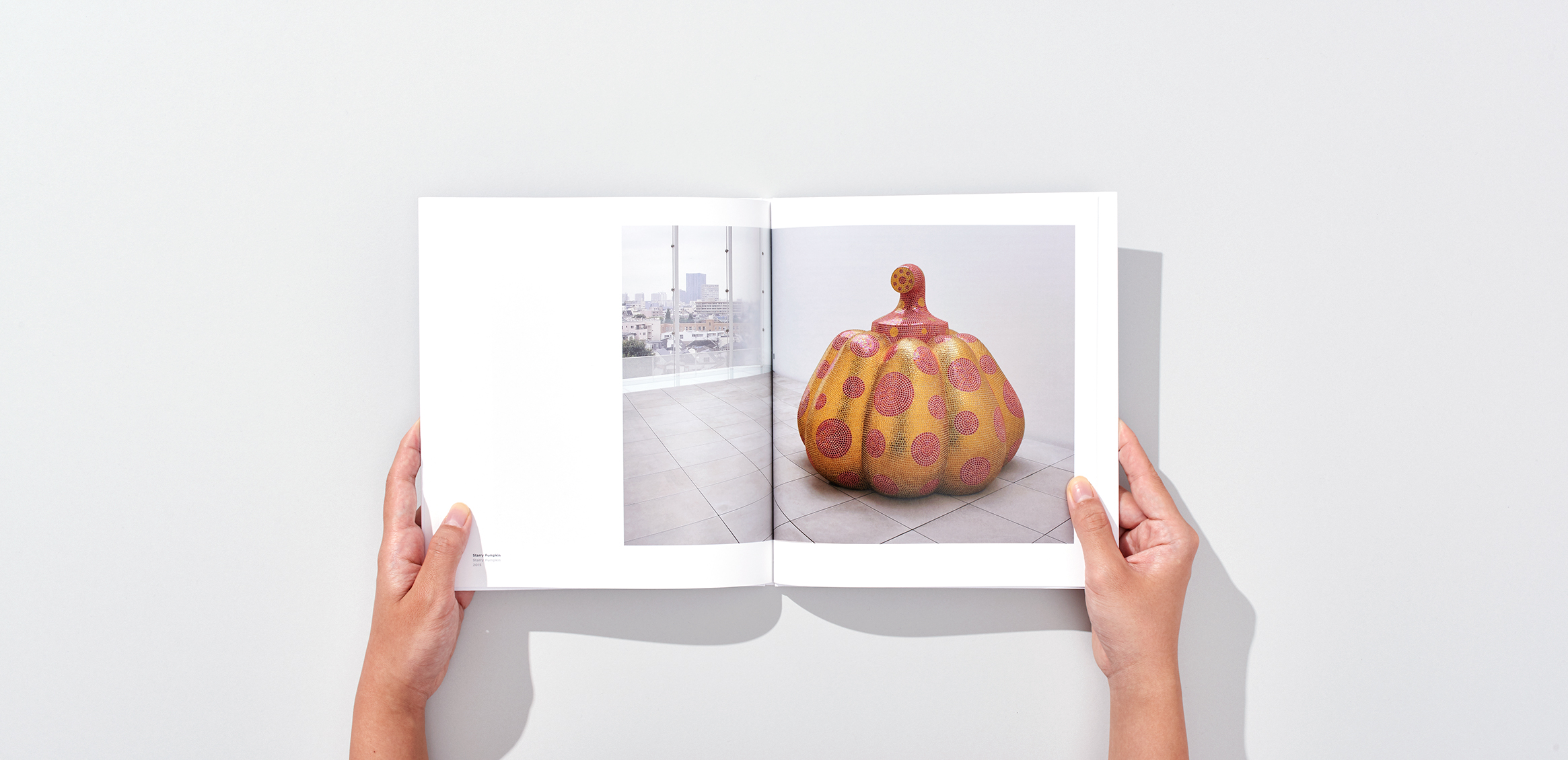 Yayoi Kusama Museum Inaugural Exhibition Commemorative Catalog8枚目