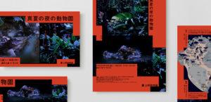 真夏の夜の動物園20181枚目サムネイル
