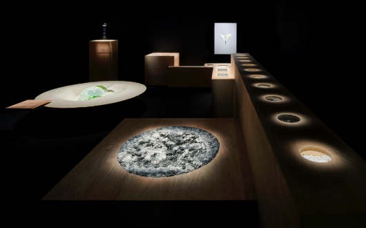 三澤 遥が「2019年毎日デザイン賞」を受賞