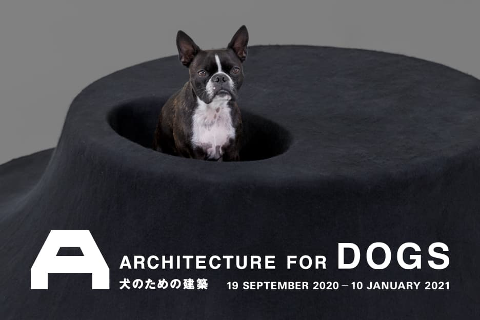 犬のための建築 at Japan House London